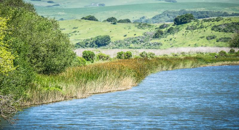 Point reyes national seashore coast on pacific ocean stock photography