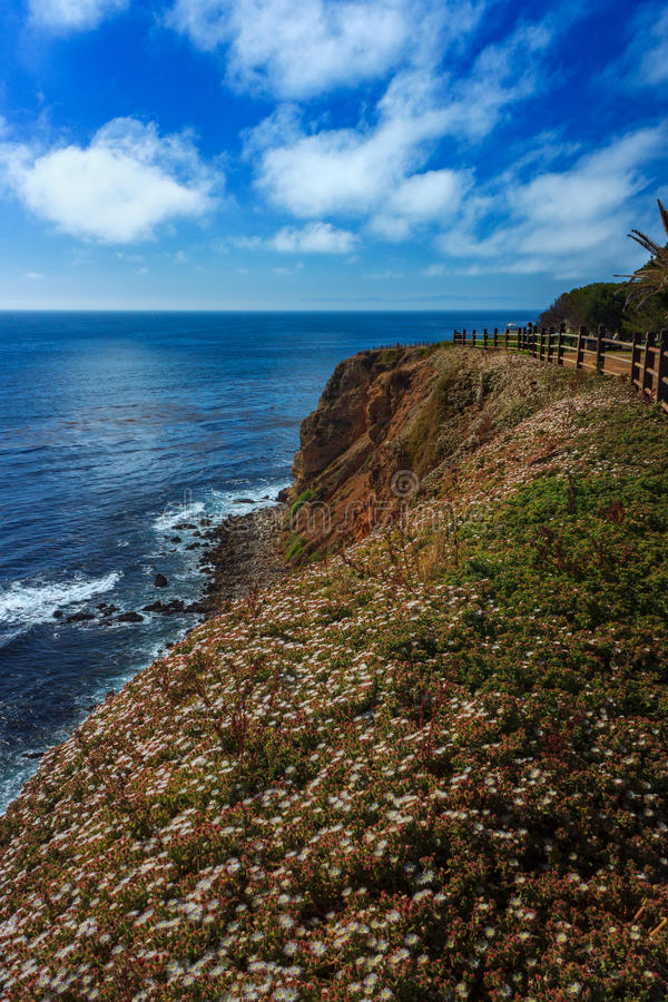 Point Vicente Super Bloom image stock