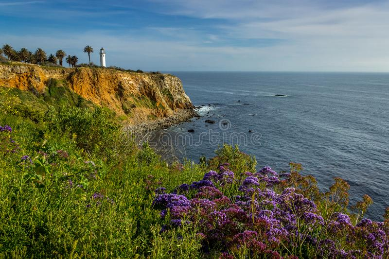 Point Vicente Super Bloom photo stock