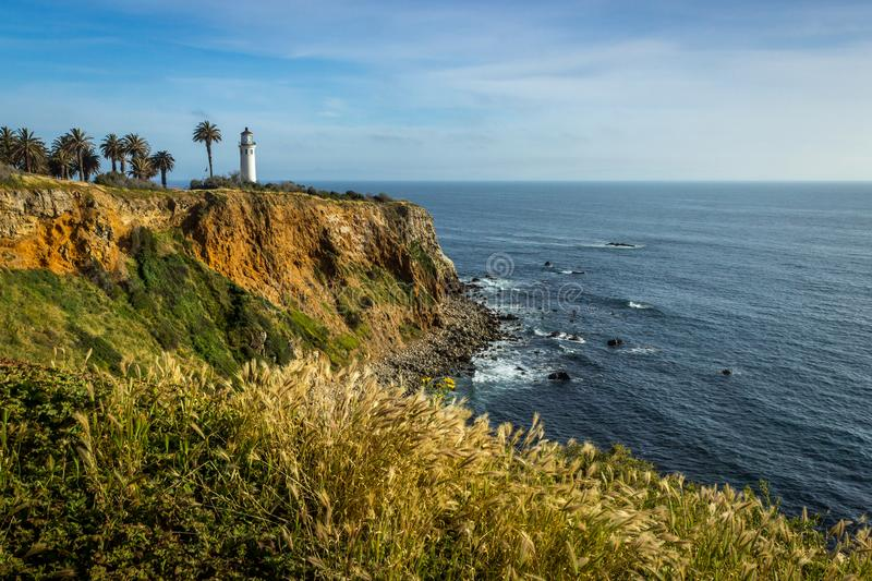 Point Vicente Super Bloom photographie stock