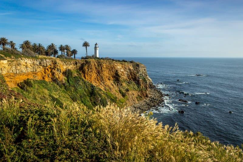 Point Vicente Super Bloom photographie stock libre de droits