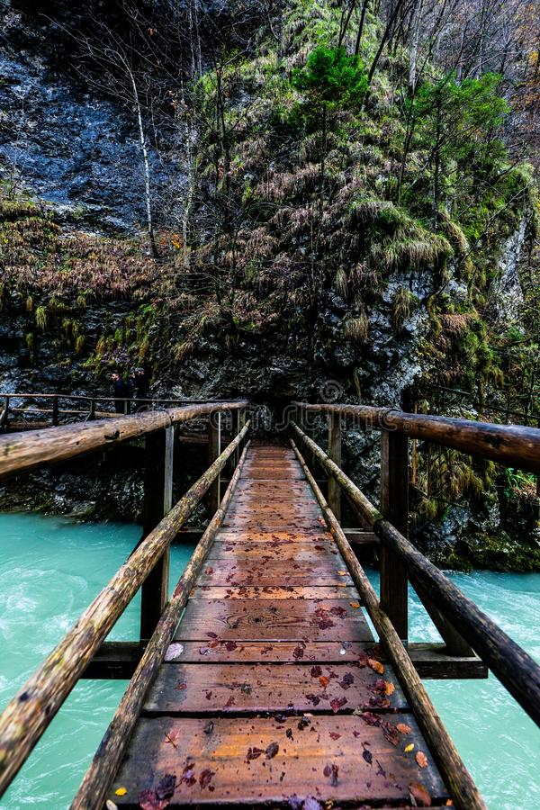 Point of View tiró en puente colgante sobre un río en un bosque fotografía de archivo libre de regalías