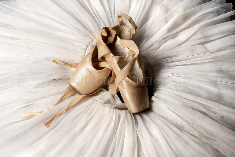 Pointe buty i baletniczy spódniczka baletnicy Fachowy balerina strój fotografia royalty free