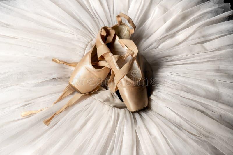 Pointe skor och balettballerinakjol Yrkesmässig ballerinadräkt royaltyfri fotografi