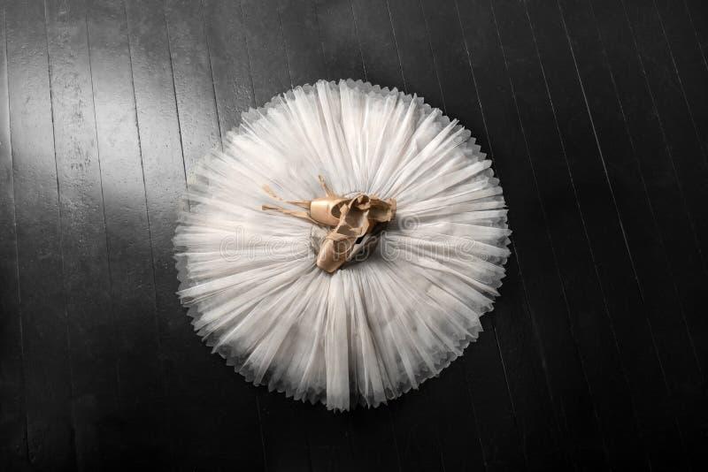 Pointe skor och balettballerinakjol Yrkesmässig ballerinadräkt royaltyfria bilder