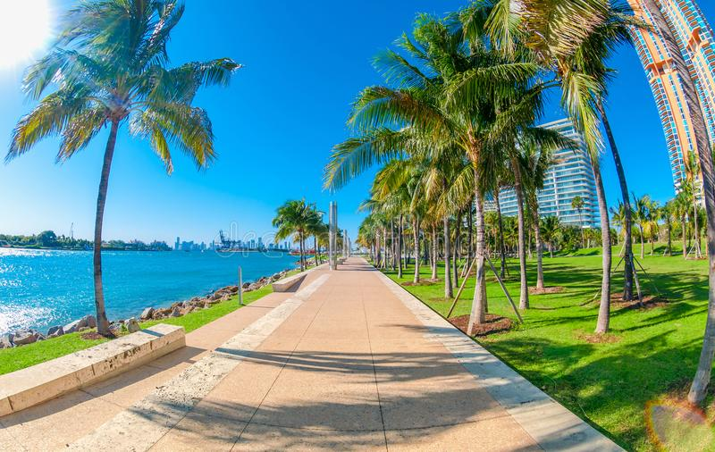 Pointe sul em Miami Beach, Florida, EUA fotografia de stock royalty free