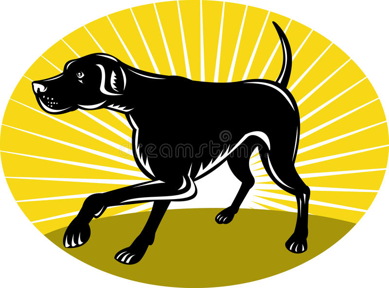 Download Pointer Dog With Sunburst Royalty Free Stock Photo - Image: 19320675