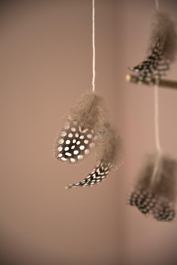 Points de polka de plume photographie stock