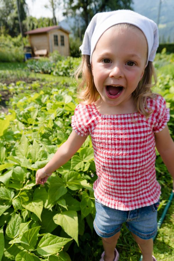 Points enthousiastes de jeune fille aux haricots à croissance rapide dans son carré de légumes photographie stock libre de droits