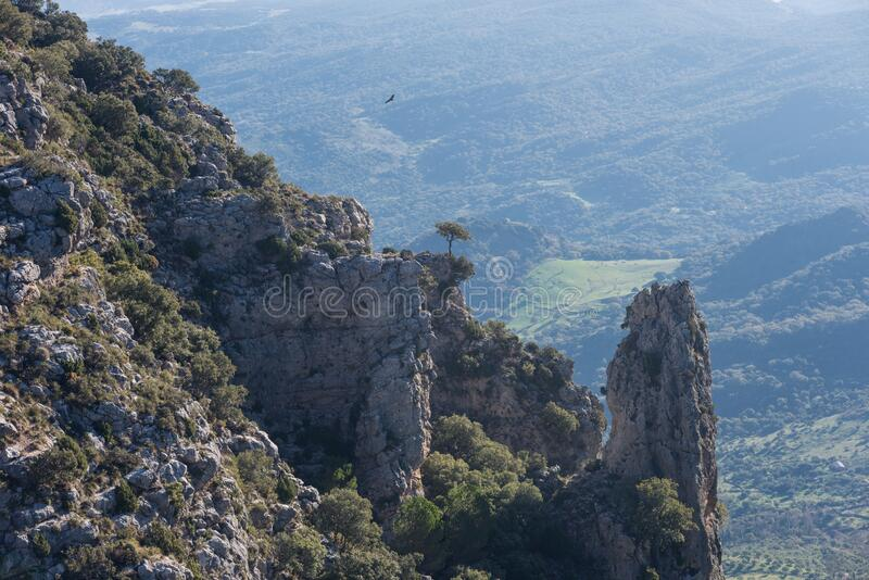 Pointy rocky mountain with vultures flying in a green valley of southern Spain royalty free stock images