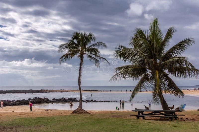 Poipu beach, looking towards the ocean, Kauai, Hawaii, USA. Poipu Beach, Kauai, Hawaii, USA. - January 11, 2012: from green grassy area bordering brown sand stock images