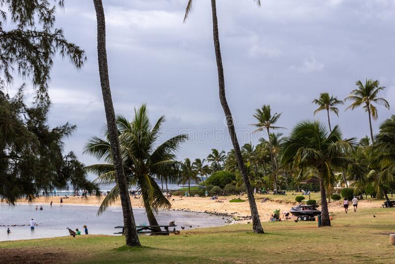 Poipu beach and bay at Poipu, Kauai, Hawaii, USA. Poipu, Kauai, Hawaii, USA. - January 11, 2012: Poipu Beach proper offers brown sand, grassy areas with palm royalty free stock photography
