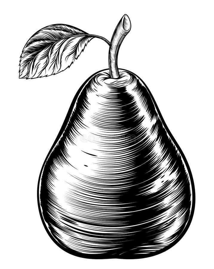 Poire de gravure sur bois en vintage illustration libre de droits