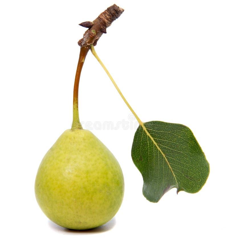 Poires d'isolement Fruit vert de poire d'isolement sur le fond blanc photos libres de droits