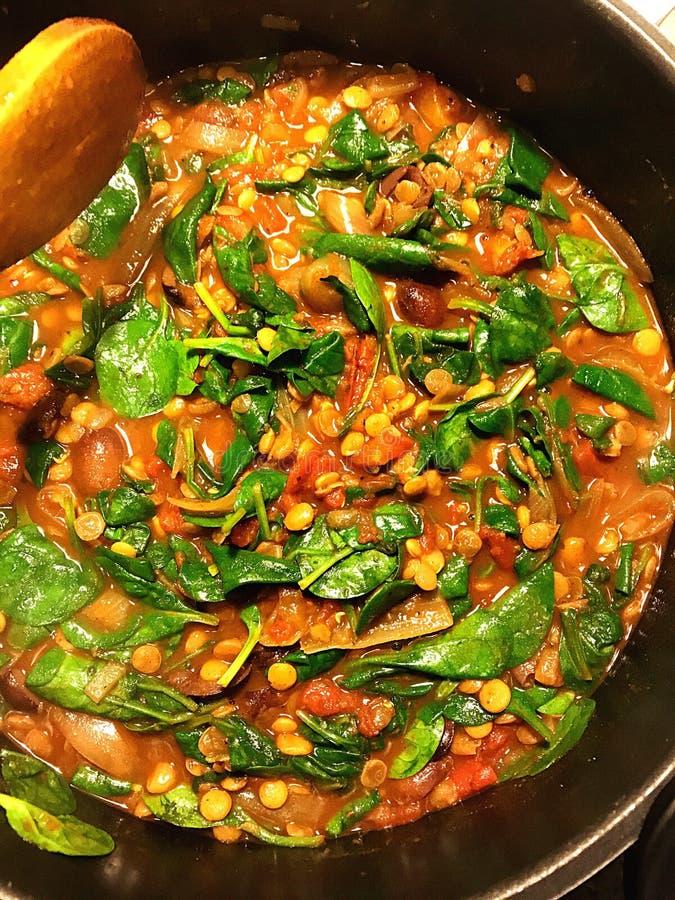 Pois chiches et épinards au curry photographie stock libre de droits