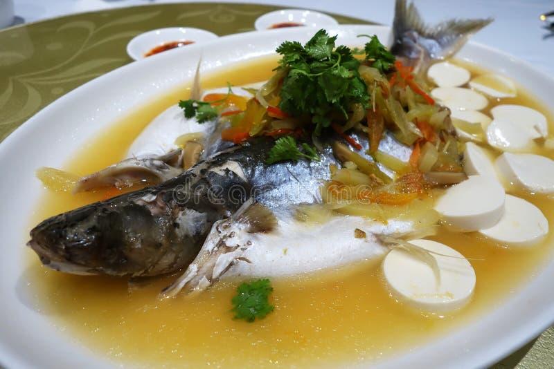 Poisson-chat d'argent de Patin cuit à la vapeur avec le style chinois photos stock