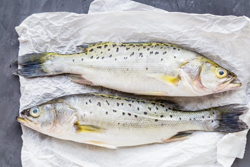 Poisson cru frais avec des épices, citron, sel sur le fond en pierre foncé Disposition créative faite de poissons, vue supérieure images stock