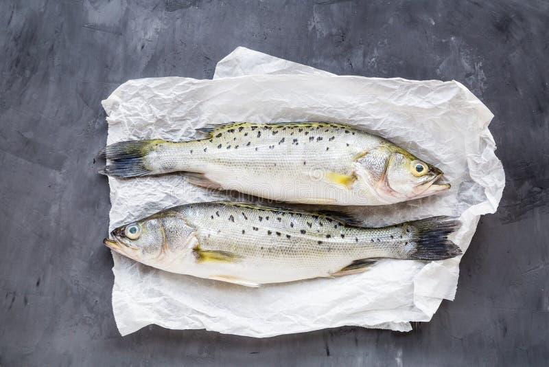 Poisson cru frais avec des épices, citron, sel sur le fond en pierre foncé Disposition créative faite de poissons, vue supérieure image libre de droits