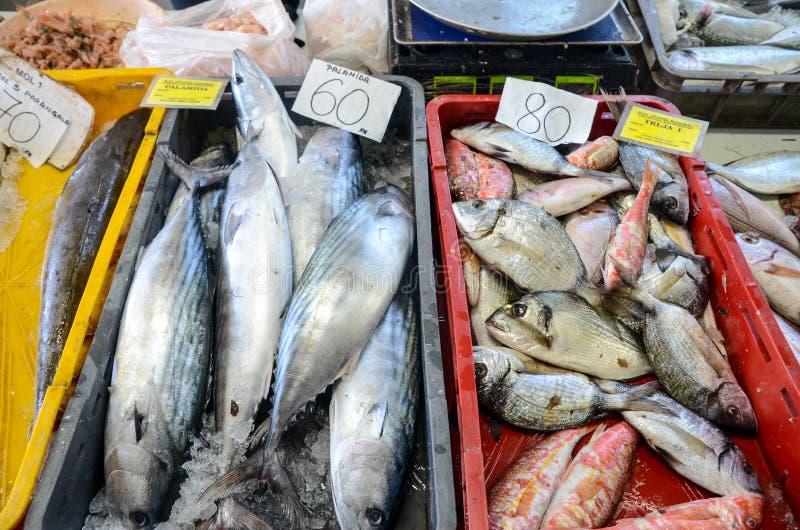 Poisson frais avec le citron prêt pour la cuisson Préparation du repas délicieux et savoureux de fruits de mer Dorade tête jeune  photographie stock