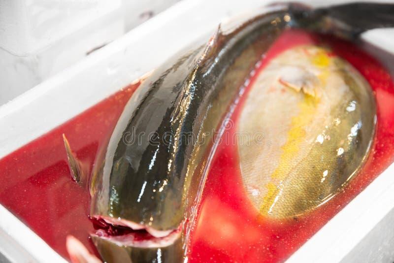 Poisson frais ou fruits de mer au marché en plein air asiatique photo libre de droits