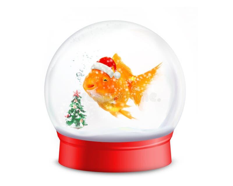 Poisson rouge souriant utilisant un chapeau de Santa avec l'arbre de Noël dans la boule de neige rouge sur le fond blanc photos libres de droits