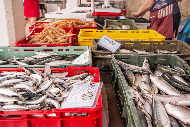 Poissonnerie dans la ville de Trogir, Croatie, offre riche des poissons et de la mer image libre de droits