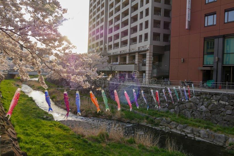 Poissons à Matsumoto, Japon images libres de droits