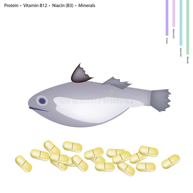 Poissons avec la protéine, la vitamine B12, la niacine ou le B3 et les minerais illustration libre de droits