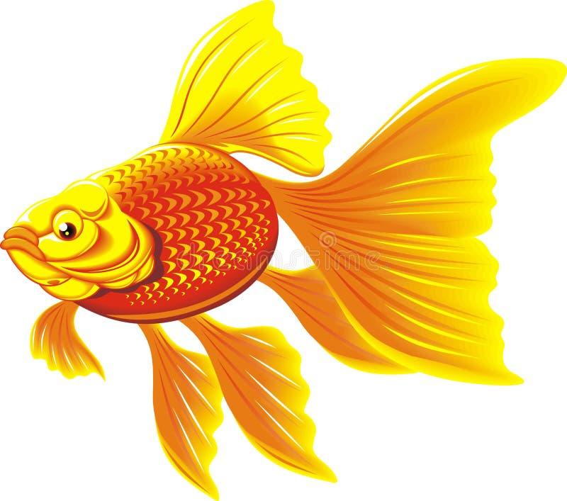 poissons d'or illustration libre de droits