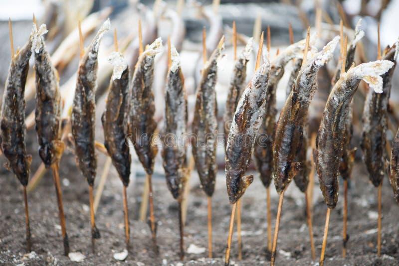 Poissons d'Ayu grill?s par charbon de bois avec du sel photos libres de droits