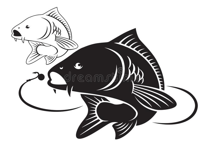 Poissons de carpe illustration stock