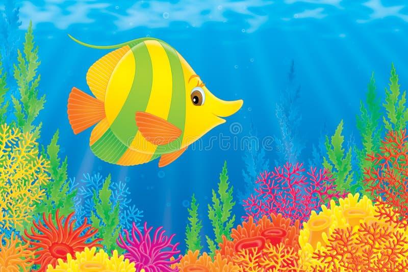 Poissons de corail illustration de vecteur
