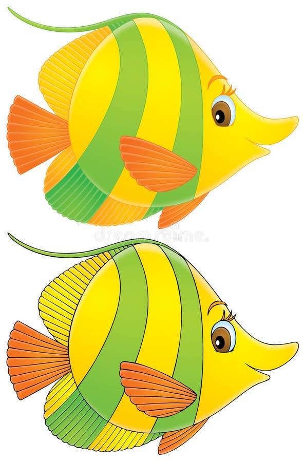 Poissons de corail illustration libre de droits