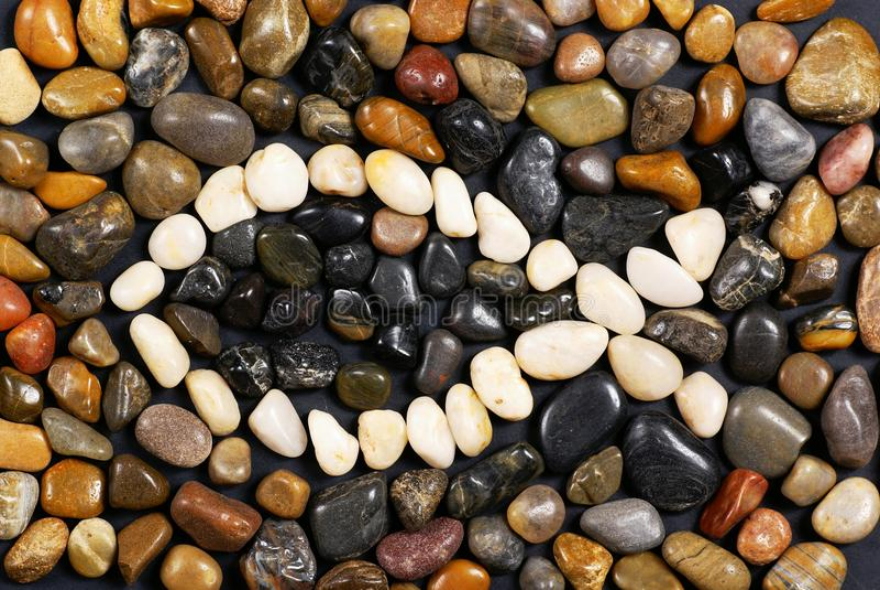 Poissons en pierre image stock