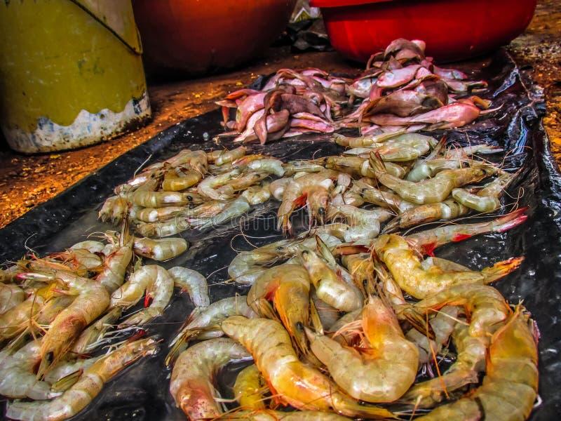 poissons et fruits de mer photo stock