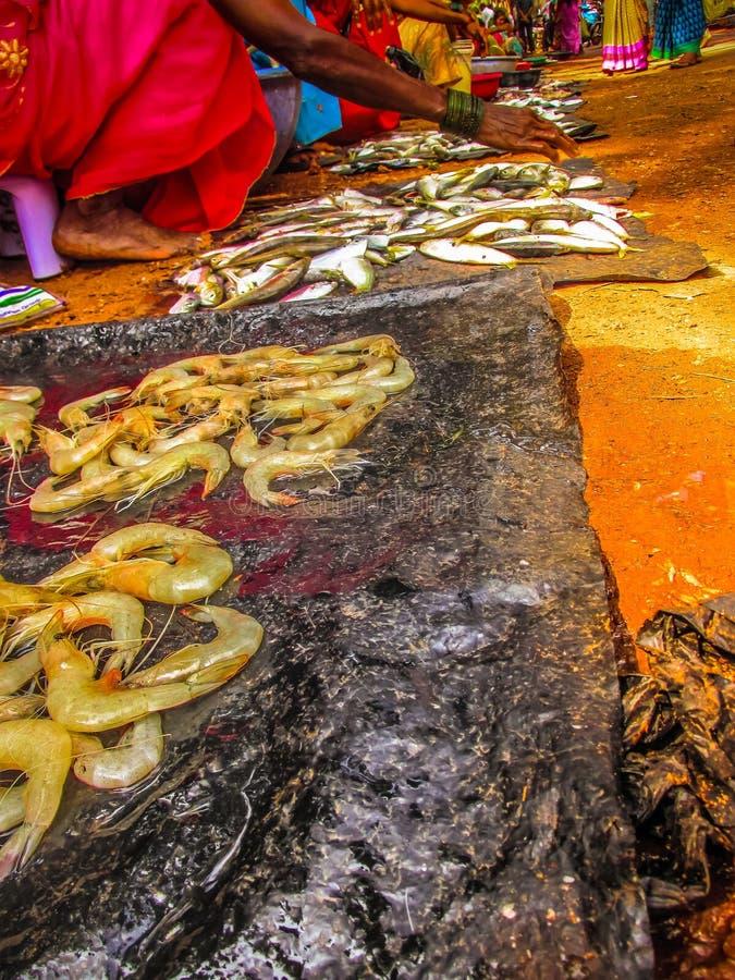poissons et fruits de mer photos libres de droits