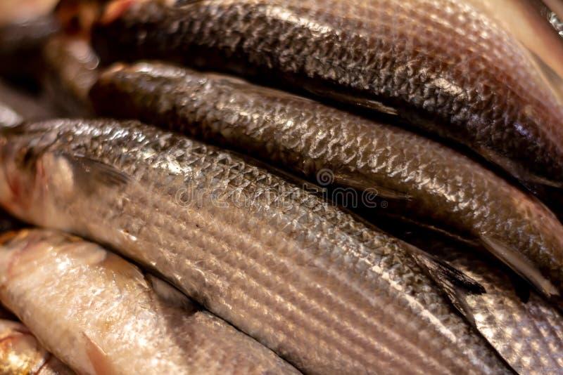 Poissons frais sur le march? Approche des échelles et de la peau des poissons de la mer Protéines de la mer images stock