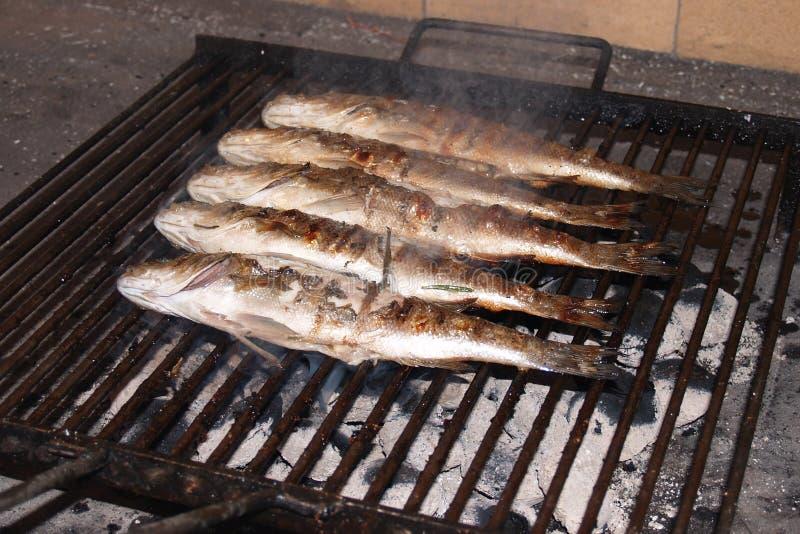 Poissons grillés (bar européen) images stock