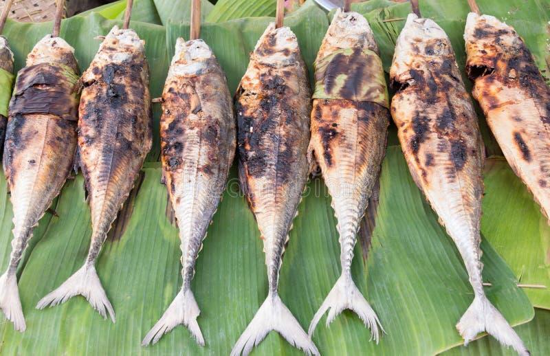 Poissons grillés de scad de torpille (scad à nageoires) - nourriture thaïlandaise photographie stock libre de droits