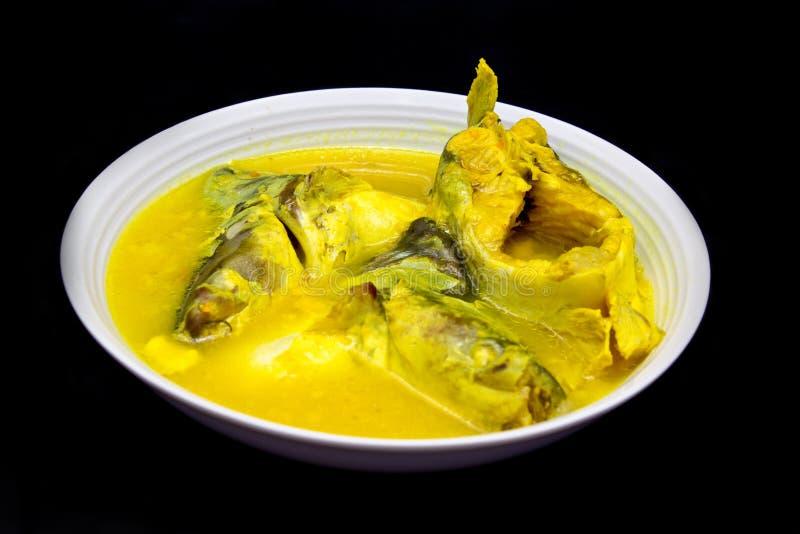 Poissons malaisiens de Patin en sauce au jus de Tempoyak images stock