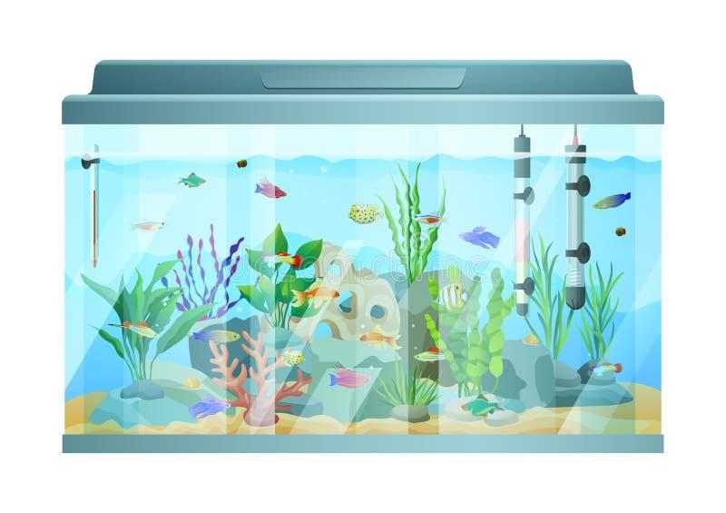 Poissons nageant parmi les pierres et l'algue dans l'aquarium illustration de vecteur