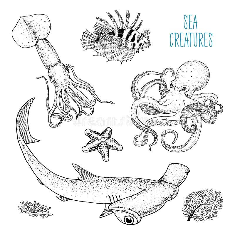 Poissons ou poulpe de créature de mer et calmar, calamari lionfish rouge et grand requin de poisson-marteau gravé tiré par la mai illustration libre de droits