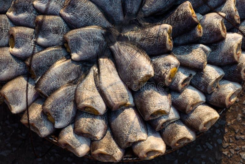 Poissons sans tête secs traditionnels Nile Tilapia à vendre au marché local dans Sattahip, Thaïlande photos libres de droits