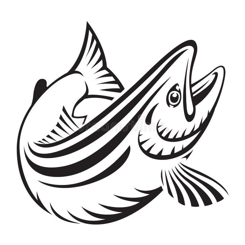 Poissons saumonés graphiques, vecteur illustration libre de droits