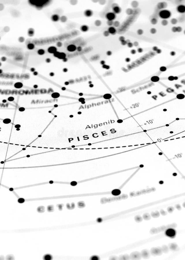 Poissons sur la carte d'étoile B photographie stock