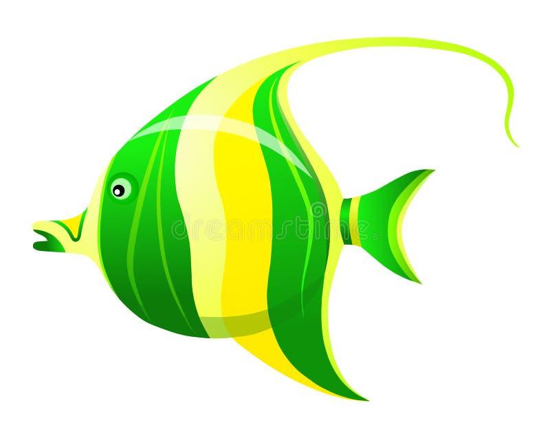 Poissons tropicaux de Zanclus pour votre aquarium illustration libre de droits