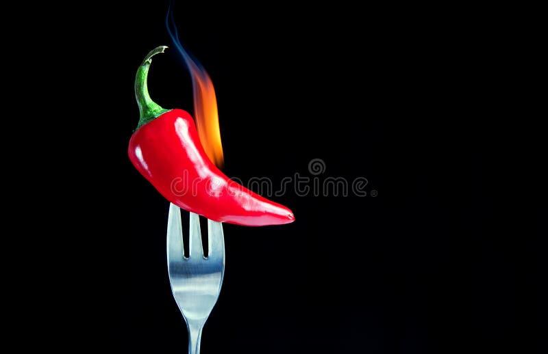 Poivre chaud flamboyant du Chili photographie stock libre de droits