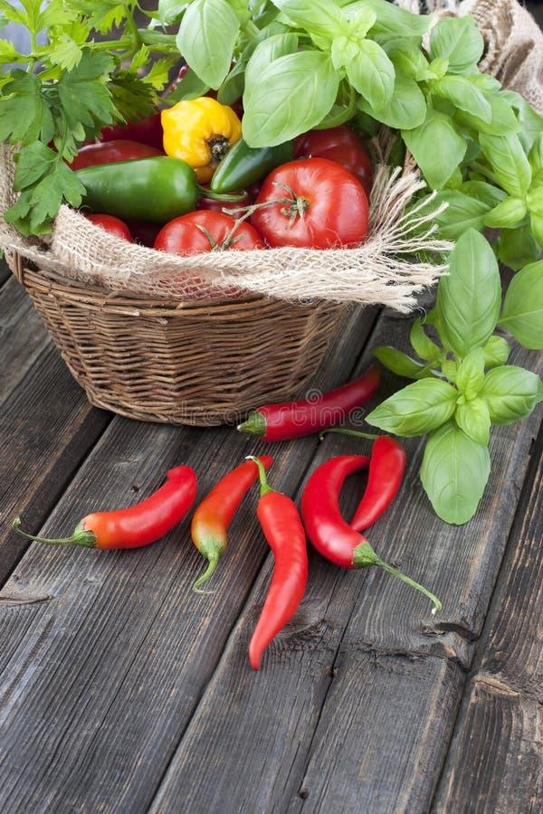 Poivre coloré avec des tomates photographie stock libre de droits