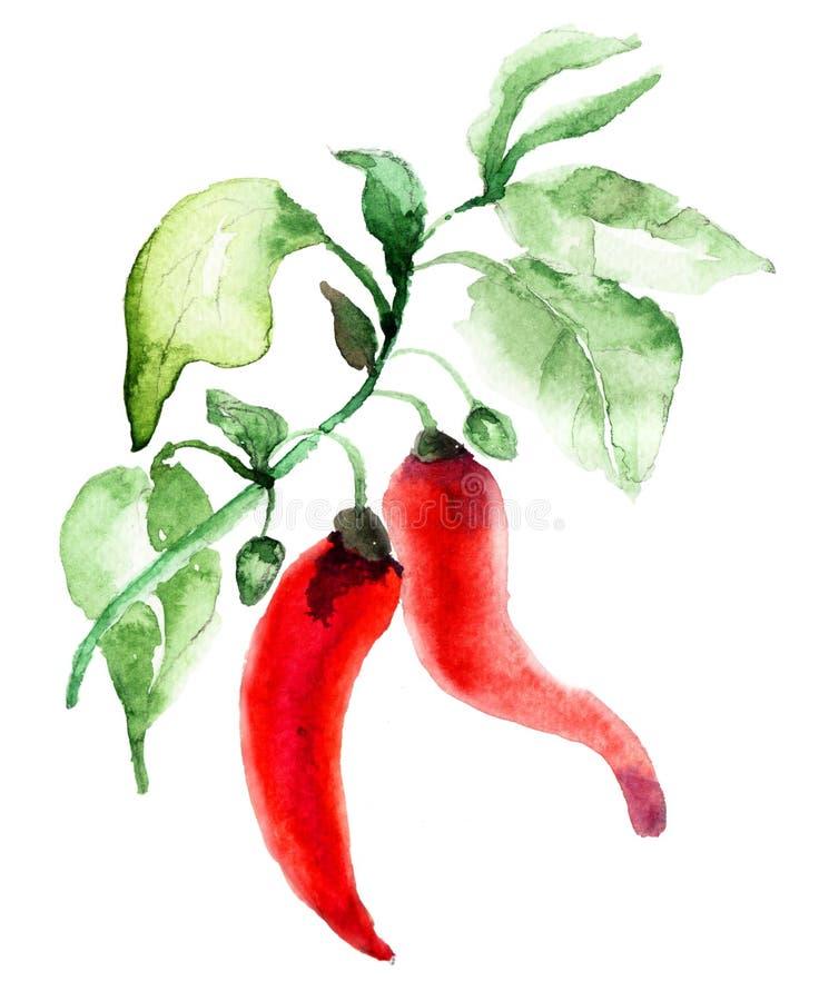 Poivre de piment d'un rouge ardent illustration de vecteur