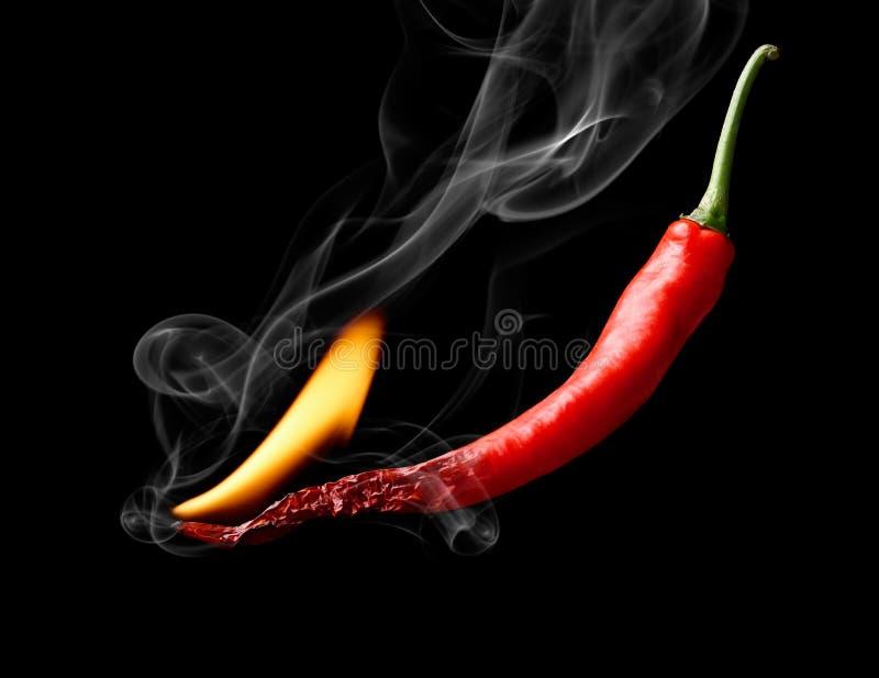 Poivre de piment d'un rouge ardent photo libre de droits